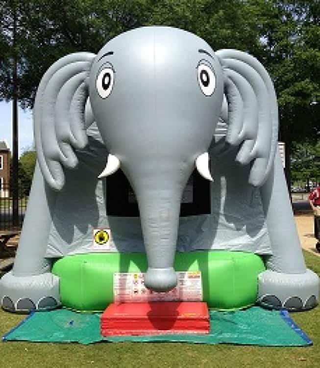 Elephant Bounce